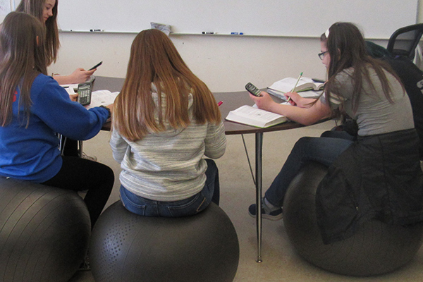 Lacomb School education grant | yoga balls, calculators and more